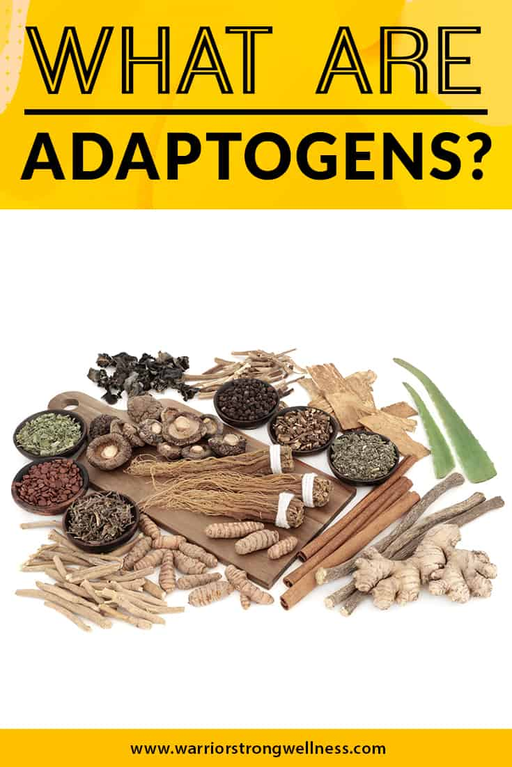 what-are-adaptogens